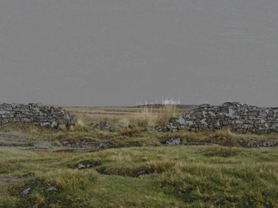 moorland-copy